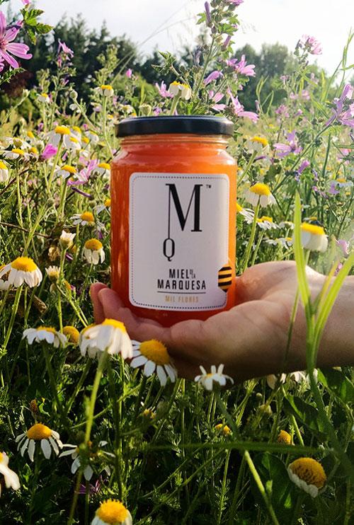 Miel de la Alcarria. Caracenilla. Cuenca. Campo de flores con Miel de la Marquesa.